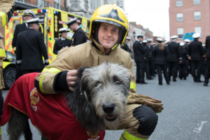 Fire fighter with dog
